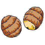 里芋(サトイモ)